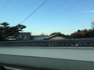 20130221_narasakurai_1
