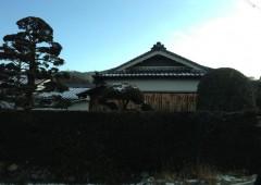 20130221_narasakurai_2