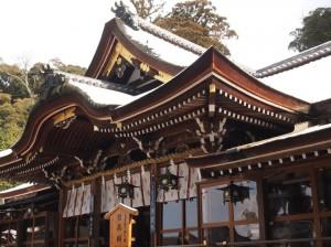 20130221_narasakurai_oomiw_2